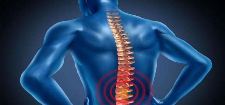 Болит живот слева и отдает в спину - Лечение спины