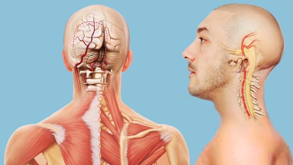 Болезни головы симптомы и лечение
